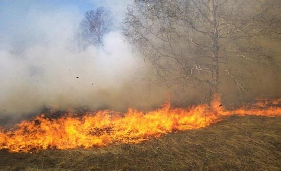إخماد حريقي محاصيل زراعية في اربد