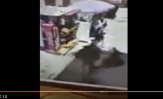بالفيديو :  لحظة مهاجمة الشهيد الأردني محمد السكجي لشرطي اسرائيلي