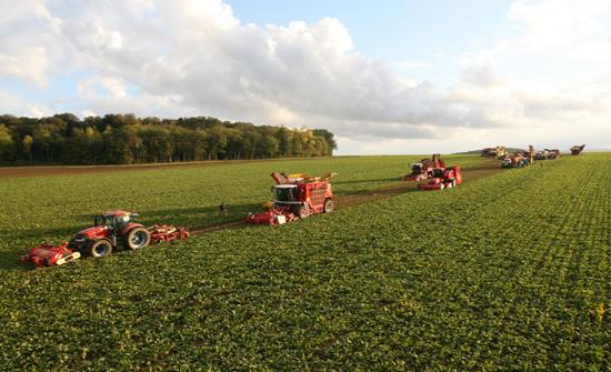 الإعلان عن بيع أكبر الشركات الزراعية في بريطانيا