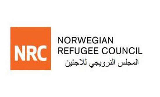 """""""النرويجي للاجئين"""": وقف امريكا مساعداتها للاونروا له نتائج مدمرة"""