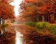 الأحد 23 سبتمبر/ أيلول.. بداية فصل الخريف فلكيًا لعام 2018