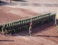 """بالفيديو : استعدادات ضخمة لـ"""" استعراض العلم """" احتفالا بمئوية الثورة العربية الكبرى"""