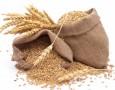 5 ايام لانتهاء مهلة اعادة تصدير شحنة القمح البولندية