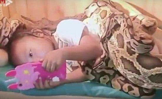 فيديو مرعب.. ثعابين ضخمة تحيط بطفلة أثناء مشاهدتها فيلما كرتونيا