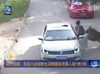 فيديو: نمر يفترس سيدة صينية