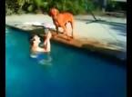 شاهد ماذا فعل الكلب عندما ظن أن صاحبه يغرق