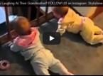 بالفيديو: توأمان تلاعبهما جدتهما وهما في قمة السعادة