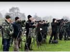 بالفيديو.. سباق بين مصورين لتصوير طائر نادر