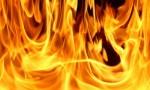 عجلون : اخماد حريق اشجار في الهاشمية