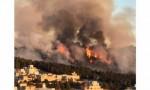بالفيديو : حريق اعشاب جافة في صويلح واخماده بطائرات