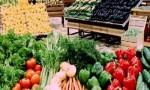 مطالب بفرض ضريبة مرور على المنتجات الزراعية السورية