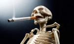 """بالفيديو ..  """" الحسين للسرطان """" : التدخين يرتبط بـ13 سرطانا"""