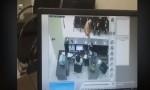 بالفيديو: لحظة السطو على بنك الاسكان .. والبنك يعقب