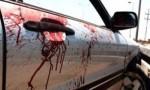 مصدر: ضابط أجنبي أمام القضاء العسكري بعد دهسه مواطناً