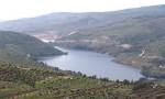 المياه تحذر من فيضان سد الملك طلال