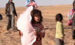الخارجية الأردنية تعلن دخول 422 مواطنا سوريا