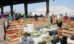 الأمانة تعفي المزارعين من رسوم المنتجات المعده للتصدير في السوق المركزي