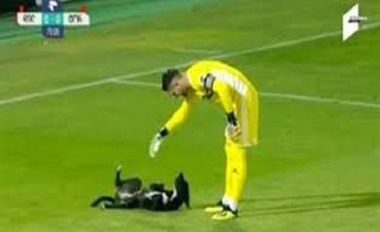 بالفيديو : كلب يقتحم مباراة كرة قدم ويثير إعجاب اللاعبين والجمهور