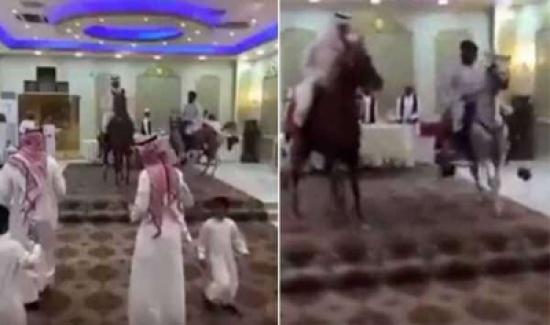 بالفيديو: استعراض بالخيول داخل قاعة أفراح كاد ان يتسبب بفوضى