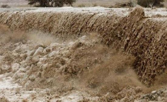 نفي رسمي : الديوان الملكي لم يخف تقرير حادثة البحر الميت