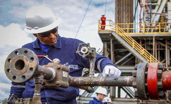 الطاقة تحيل عطاء إستكشاف النفط والغاز في منطقتي الأزرق والسرحان