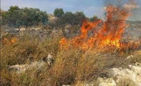إخماد حريق محاصيل زراعية في اربد