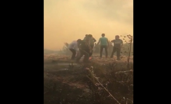 شاهدوا بالفيديو كيف شارك الملك بإخماد حريق الكمالية