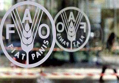 الفاو تشكل لجنة خبراء للنهوض بالقطاع الزراعي