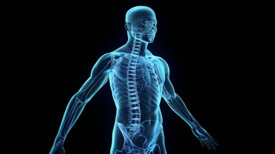 هل تعلم ان عليك ٣٦٠ صدقة يومياً بعدد مفاصل جسدك ؟!