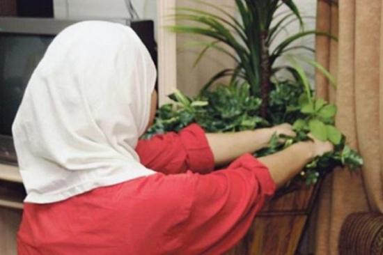 نقابة اصحاب مكاتب استقدام العاملات تنوي الاعتصام غدا