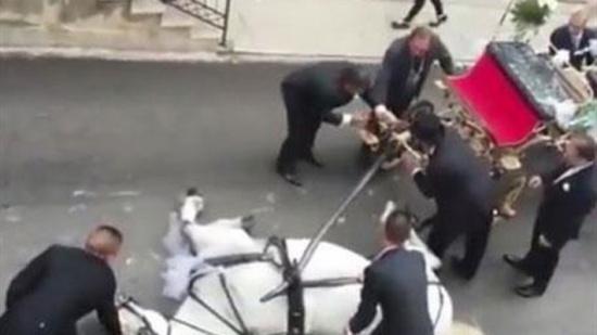 بالفيديو - مشهد مأساوي خلال حفل زفاف... بسبب حصان!