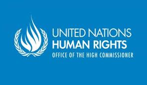 المفوض السامي لحقوق الإنسان : نصف قرن من الاحتلال الحق ضررا بالفلسطينيين