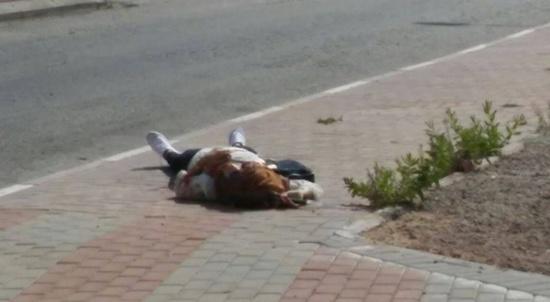 """استشهاد فتاة على حاجز """"زعترة"""" جنوب نابلس برصاص الاحتلال"""