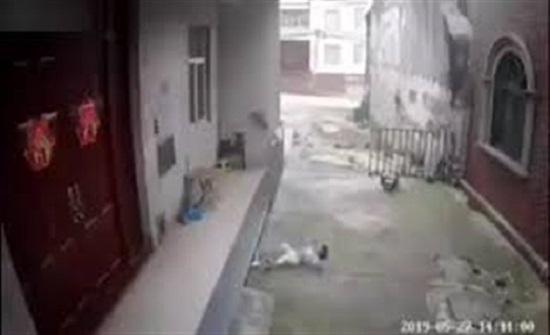 لحظة نجاة طفل من الموت بعد سقوطه من الطابق الثاني (فيديو)