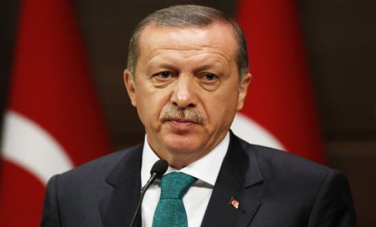 برلماني أوروبي بارز يحذر أردوغان من مواصلة تصعيد النزاع مع ألمانيا