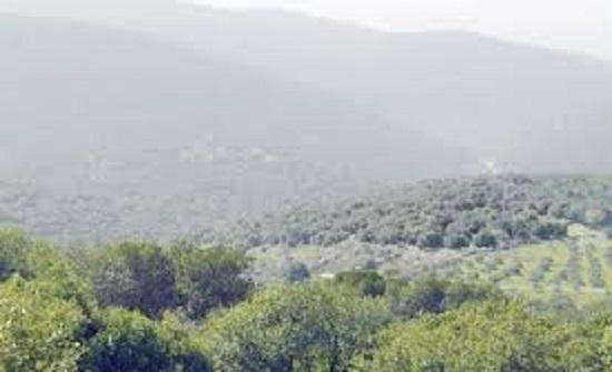 دعوة المتنزهين في وادي الريان وبرقش للمحافظة على جمالية الطبيعة
