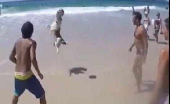 بالفيديو : كلب حريف .. شاهد لمسة واحدة فى الهواء ومربعات كروية