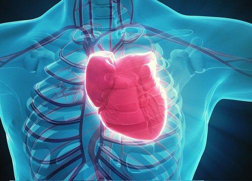 اسباب الشعور بوخز في القلب