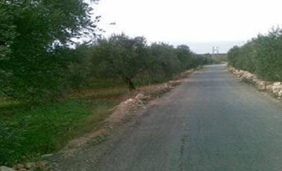 مزارعو المزار الجنوبي يشكون من تردي اوضاع الطرق الزراعية