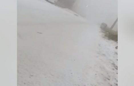 شاهدوا :مرتفعات الطفيلة تشهد تساقطا للثلوج واغلاقات جزئية للطرق الرئيسية