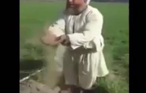 بالفيديو : شاهد ماذا قال هذا الفلاح المصري عن السيسي والنيل وأثيوبيا