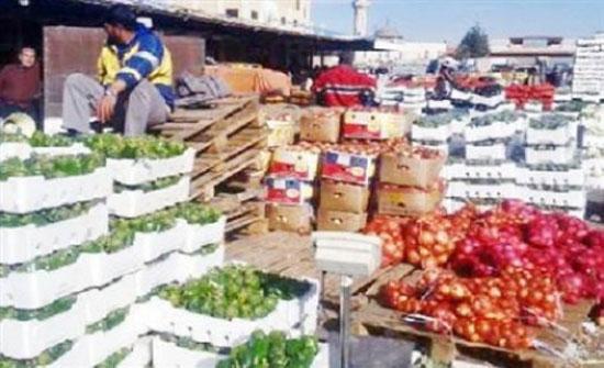 """""""الزراعة"""": الصادرات للأسواق الخليجية وصلت الف طن اليوم"""