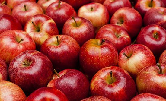 دراسة: تفاحة واحدة يوميا تحميك من السرطان وأمراض القلب