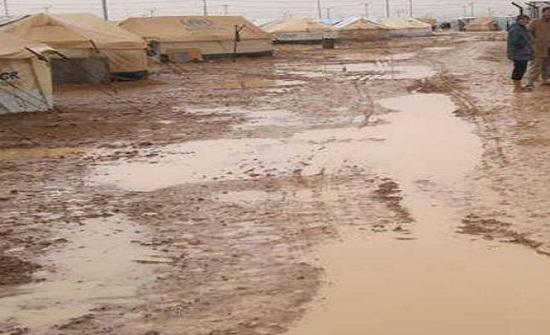 اجلاء خيم عشوائية للاجئين السوريين في ام الجمال
