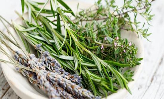 أفضل اعشاب لعلاج القولون العصبي مع طريقة الاستخدام
