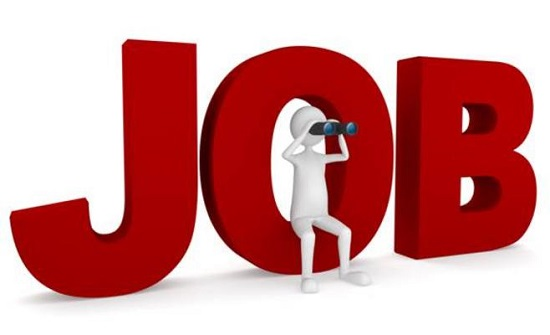 كندا تفقد أكثر من 24 ألف وظيفة الشهر الماضي