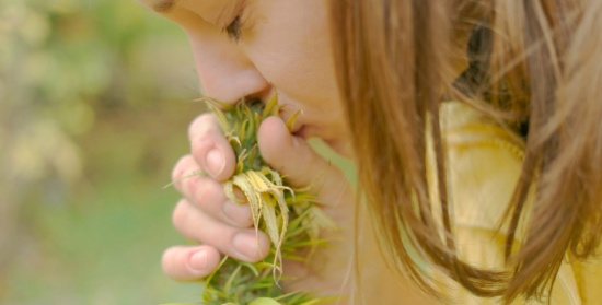 أعشاب طبيعيّة تساعدك في علاج الاكتئاب.. تعرفي عليها!