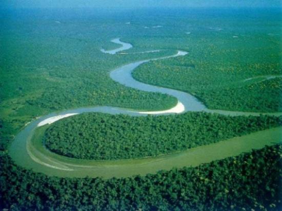 بالصور.. أكبر أنهار العالم