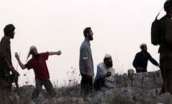 مستوطنون يعتدون على ممتلكات فلسطينيين جنوب نابلس