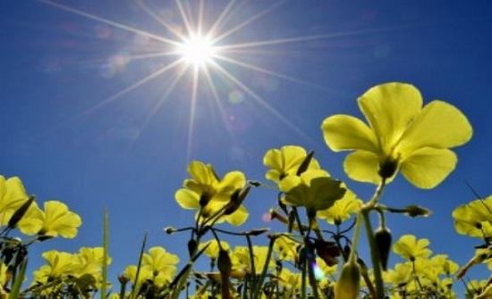 الأحد : ارتفاع طفيف على درجات الحرارة